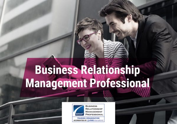 Business relationship management professional