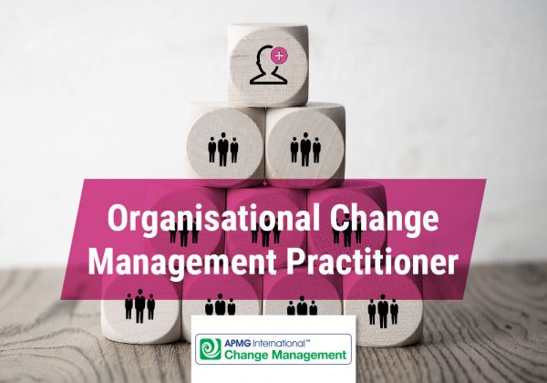 Organisational change management practitioner